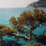 fotos de graça Fotos livres de direito da Espanha. Fotos gratuitas de Maiorca e da ilha de Mallorca, imagens de Ibiza, fotografias de Barcelona, fotos gratuitas de Madri...